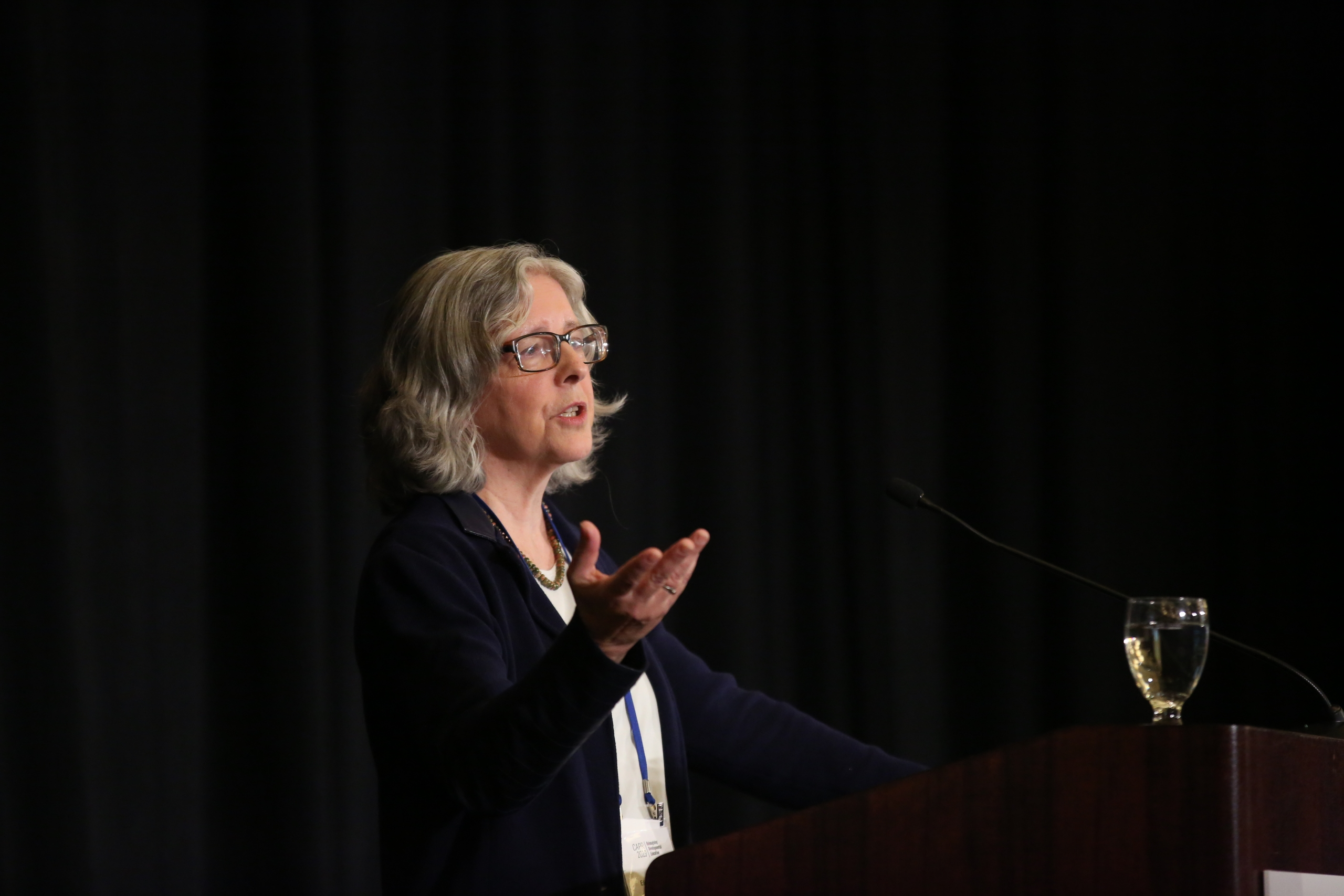 Elisabeth Barnett presents during a plenary session